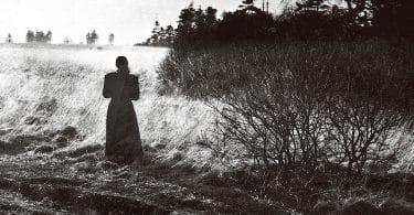 Desmond Hogan, Les Feuilles d'ombre, Grasset