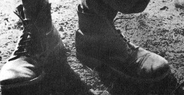 Antoine de Baecque, Les godillots. Manifeste pour une histoire en marche, Anamosa
