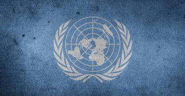 Traduire ONU Santiago Artozqui