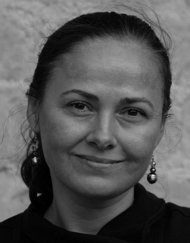 Doina Ioanid, Le collier de cailloux
