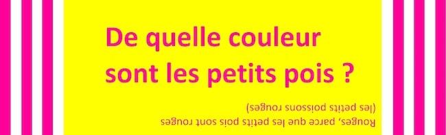 La bêtise artificielle Agnès Desarthe En attendant Nadeau