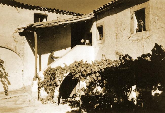 Javier Cercas, Le monarque des ombres
