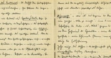 Les cahiers noirs de Martin Heidegger Marc Lebiez