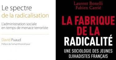 Laurent Bonelli et Fabien Carrié, La fabrique de la radicalité. Une sociologie des jihadistes français Radicalisation