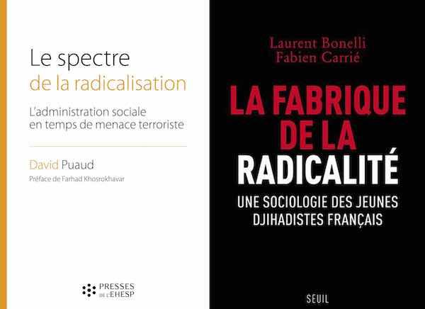 Laurent Bonelli et Fabien Carrié, La fabrique de la radicalité. Une sociologie des jihadistes français Radicalisation En attendant Nadeau